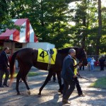 Tonalist before the Jim Dandy